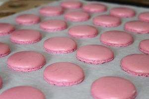 Image pour Coques macarons